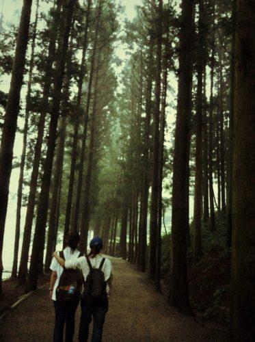 수목원 산책